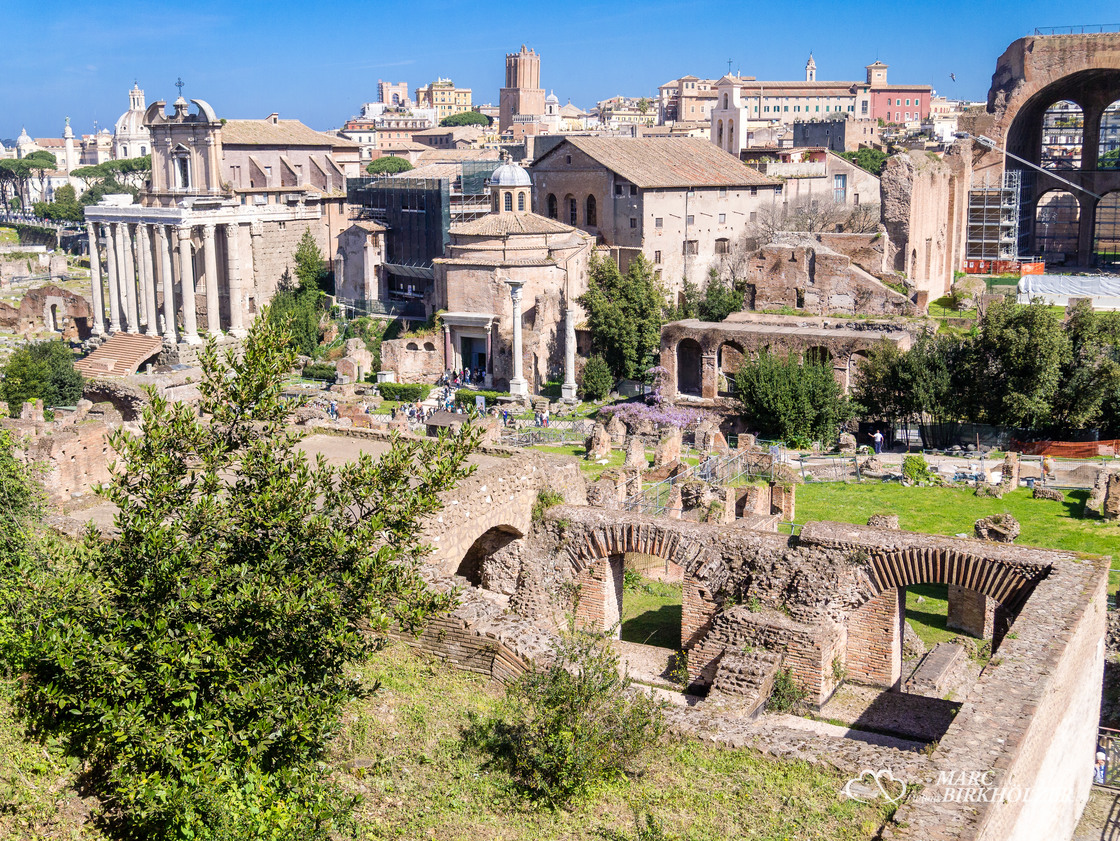 Blick vom Palatin hinunter auf das Forum Romanum