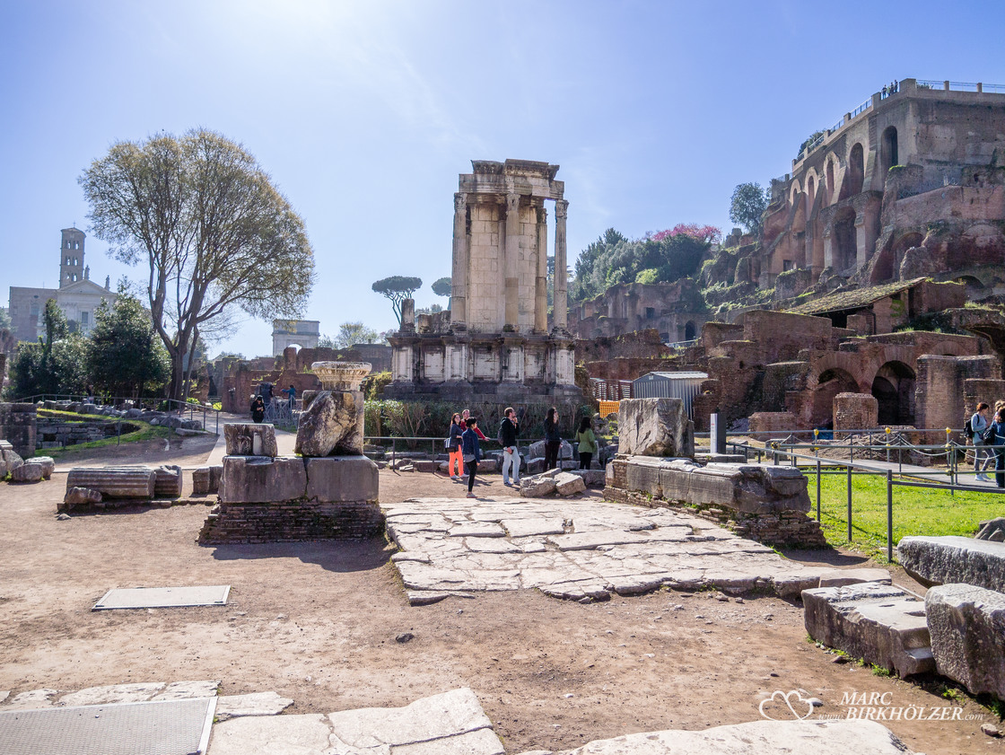 Das Forum Romanum, rechts oben das 50 Meter hohe Palatin