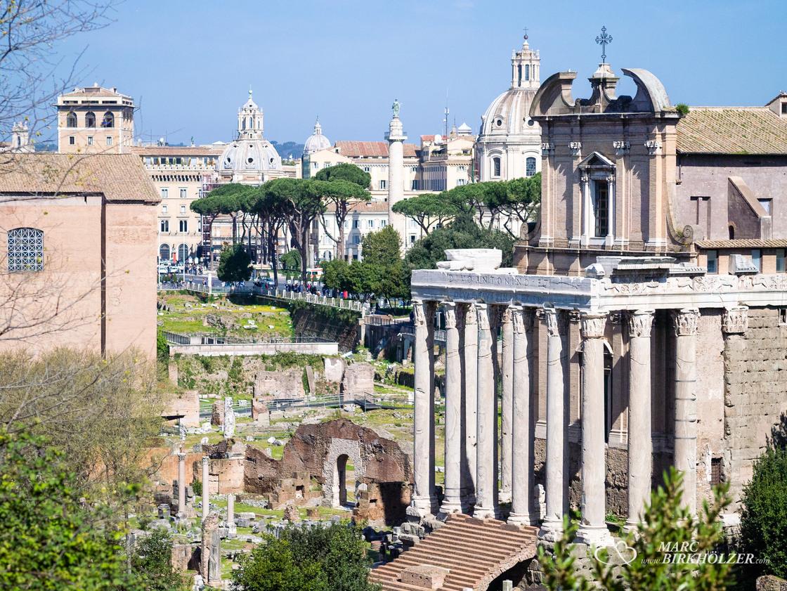Blick vom Palatin hinunter auf das Forum Romanum. Im Hintergrund das Trajansforum